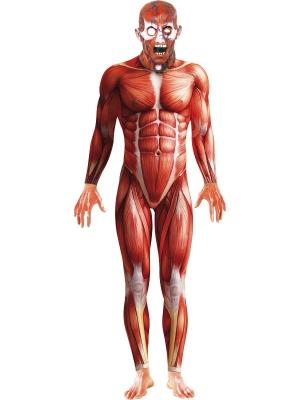 Anatomiska cilvēka kostīms