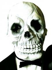 Galvaskausa maska (WDC-14331)