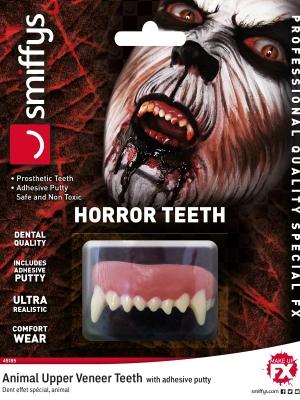 Dzīvnieku zobi