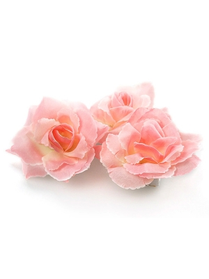 24 gab, Rozes, rozā, 9 cm