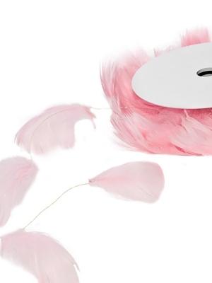 Spalvu stieple, rozā, 10 m