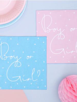 20 gab, Salvetes Puika vai meitene?, zilas un koraļļu, 33 x 33 cm