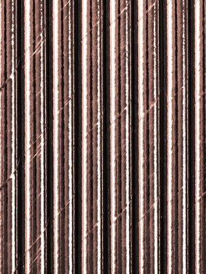 10 gab, Papīra salmiņi, rozā zelts, 19.5 cm