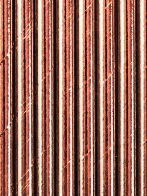 250 gab, Salmiņi, rozā zelts, 19.5 cm