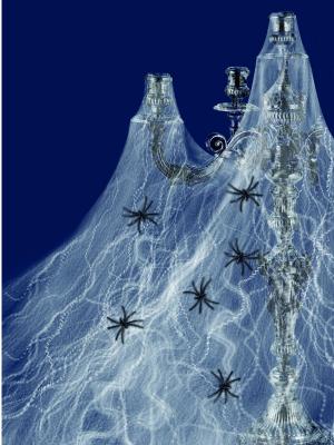 Zirnekļa tīkls ar 6 zirnekļiem, 220 g