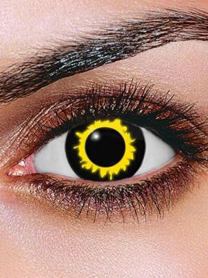 Lēcas vilka acs, melnas ar dzeltenu