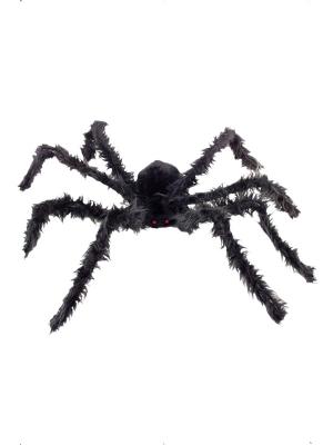 Liels, matains zirneklis ar spīdošām acīm, 102 cm
