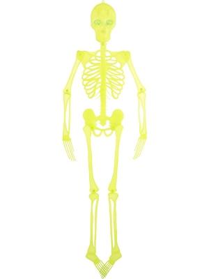 Neona, mirgojošs skelets, 150 cm